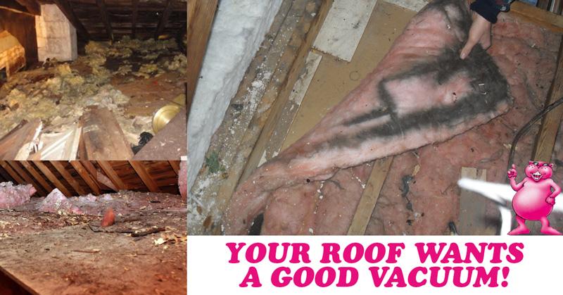 roof-vacuum-lp